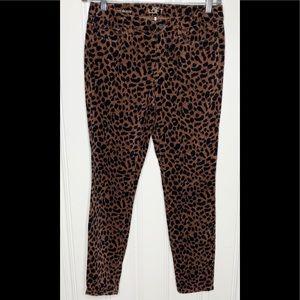 Ann Taylor Loft  Animal Print Super Skinny  Pants